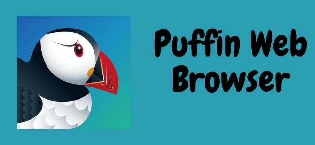 Puffin Web Browser for PC