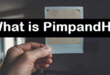 pimpandhost