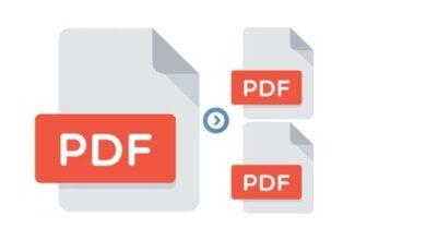Split PDF Files In a Secured Way