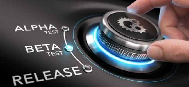 Management of Enterprise Software Development